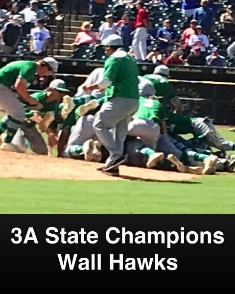 Wall 2019 State Championship Slide